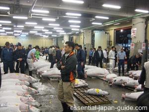 ginza tsukiji Ginza