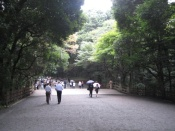 meiji jingu 5 Meiji Jingu Shrine