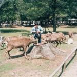 052 52 150x150 Nara Travel Guide