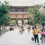 053 53 150x150 Nara Travel Guide