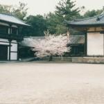 060 60 150x150 Nara Travel Guide